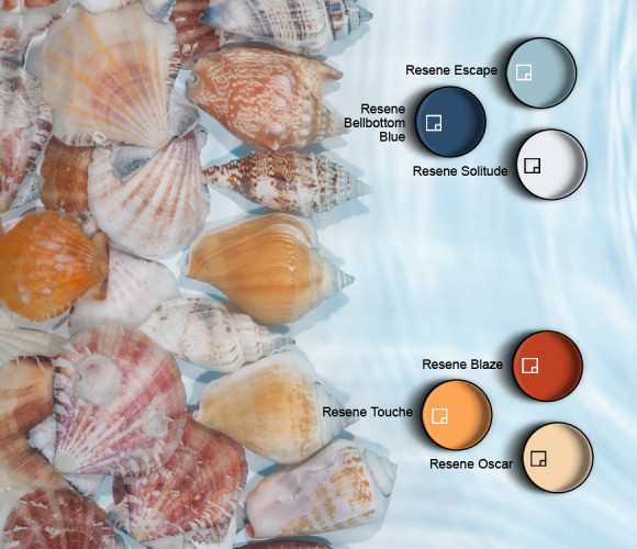seashell colours, paint inspiration, blue decor, sea inspired