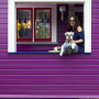 purple house, purple exterior, painted weatherboards, bright house, back porch