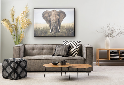 lounge, living room, grey lounge, grey living room, resene archive grey, elephant print