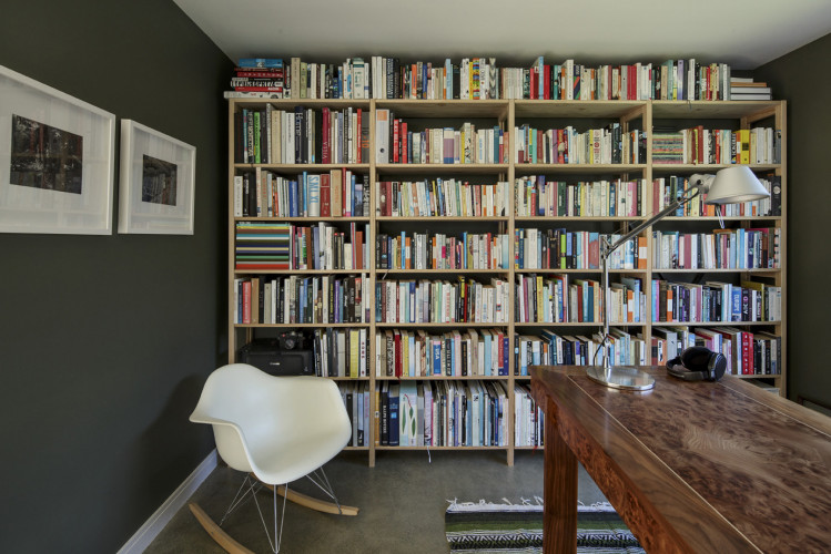 bookshelves, bookcase, study, olive green, interior, green paint