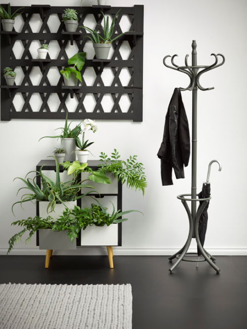 black and white interior ideas, black and white interior inspiration, entryway ideas, interior trend