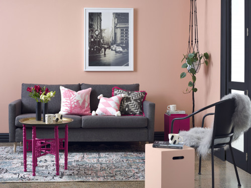 pink living, trends, pink paint, interiors