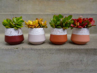 DIY Project: Give plain store-bought pots a fresh new look by using Resene FX Crackle